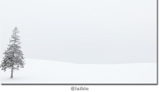white1-01