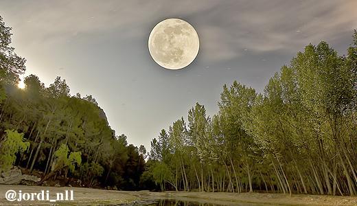 moon1-01